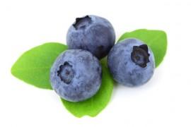 Borůvka, léčivý plod i listy