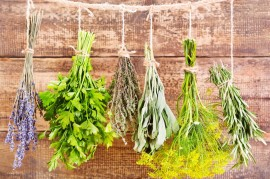 How to properly dry and store herbs