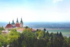 Family gossamer in Olomouc