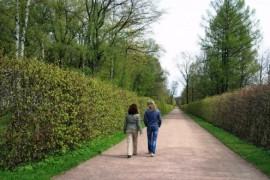 Avoid high pressure, walk!
