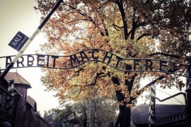 Freezing people interested in the history of the Holocaust, hundreds of thousands of Czechs attend m