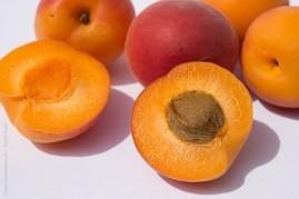 Apricot festivities Valtice: good food, wine and folk festivity