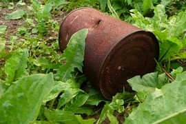 The number of illegal dumps throughout the summer in the Czech Republic increased the most in the no