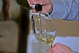 Cellarman: St. Martin's wine is a Czech tradition