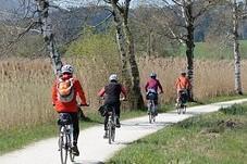 Cycling season begins - bikes are stolen in bulk