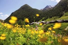 In the footsteps of Karel Havlicek Borovsky. Beauty Brixen and surroundings