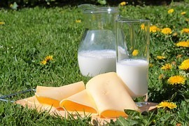 Myths about milk may be Eastern philosophy