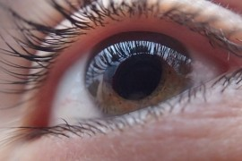 Threatening you with glaucoma? Determine risk