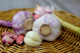 Garlic repels ticks! This proved unique research