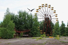 Black storks from the Czech Republic may be nesting in Chernobyl