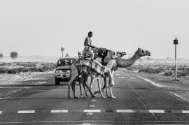 World curiosities in road traffic rules