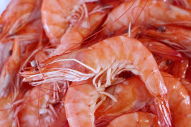 Detection of microplasts in sea salt and seafood